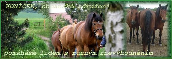 3.ročník Skřidelského bramboru