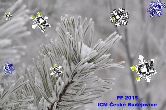 PF 2015 ICM 2