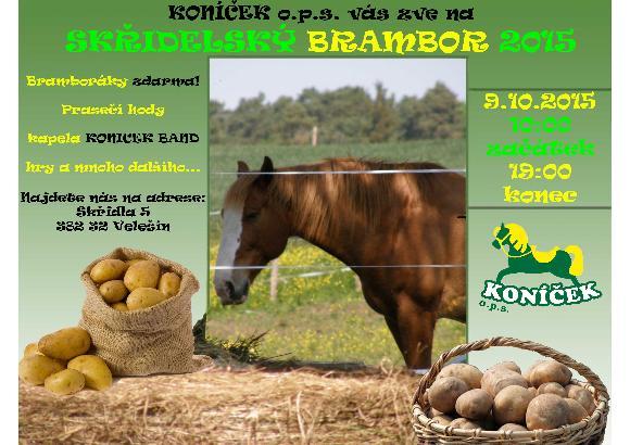 Pozvánka Skřidelský brambor 2015