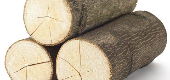 1. Dolnobavorské dřevařské fórum