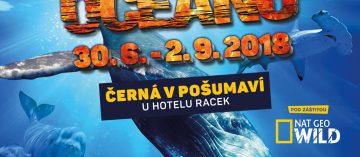 Obři oceánů – výstava, ze které se vám zatají dech
