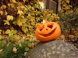 Dovolená o podzimních prázdninách