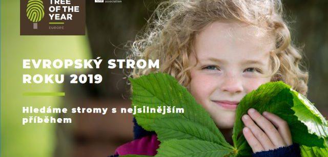 Evropský strom roku 2019: Hlasujte