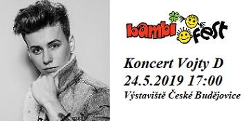 BAMBIFEST - koncert Vojty Drahokoupila