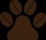 V Budějcích se psem