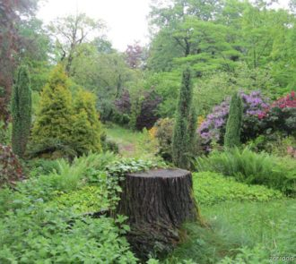 Botanická zahrada Tábor